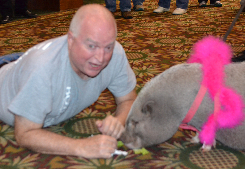 John Mathis strives to kiss Charlotte the pig after being unanimously chosen for the task by his colleagues at Sam's Town, Tunica, MS.